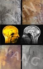 web pic triptych draft 2